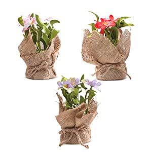 Silk Flower Arrangements LecoDiy Small Artificial Potted Plants Alstroemeria Set of 3 Colors Rustic Natural Farmhouse Spring Flower in Jute Pot for Indoor & Outdoor Home Table or Wedding Decor 4 x 4 x 7 inches