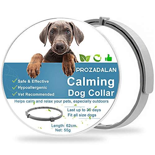 Collar de Perro Calmante, Collar Impermea Bleajustable Para Calmar Eficazmente la Ansiedad Del Perro, 30 Días de Duración Seguro Tóxico Protege la Salud Física y Mental De Los Perros (62cm)