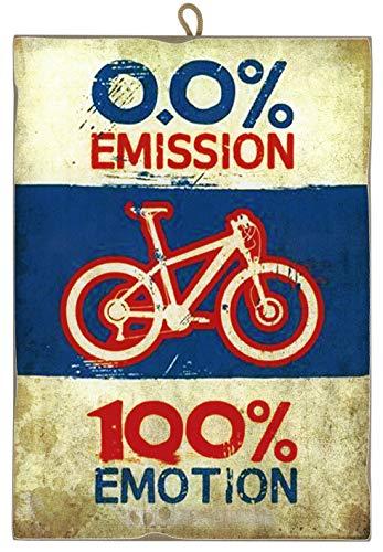 Cuadro de Estilo Vintage con Imagen de Bicicleta Ecológica de Colección Impresión Láser Sobre Madera – Idea Regalo
