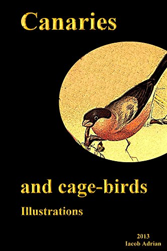 Canaries and cage-birds Illustrations (English Edition)