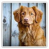 Impresionantes pegatinas cuadradas (juego de 2) 7,5 cm – Lindo café perro cachorro divertido calcomanías para portátiles, tabletas, equipaje, reserva de chatarras, neveras, regalo fresco #44766