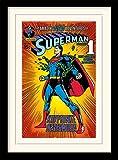 Pyramid International Superman (Kryptonite) 30x40 cm