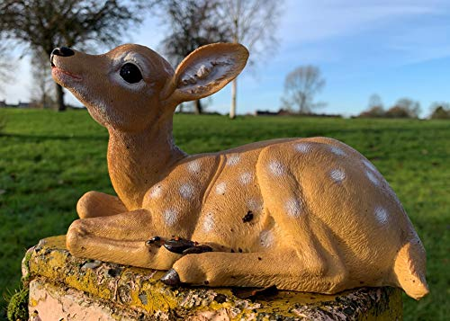 Best Value Here Laying Down Fawn Ornament Baby Stag Deer Garden Sculpture Brown Resin Home Decoration (Deer)