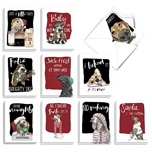The Best Card Company Holiday Dog Antics - 20 Assorted Boxed Merry Christmas Note Cards with Envelopes (4 x 5.12 Inch) - Featuring Man's Best Friend Disrupting Christmas Celebrations AM2918XSG-B2x10