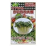 カネコ種苗 園芸・種 KS100シリーズ かいわれ大根 野菜100 751