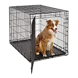 Midwest Life Stages Single-Door Folding Metal Dog Crate w Divider