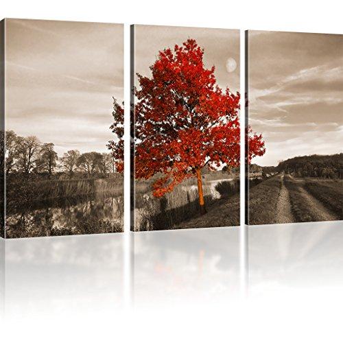 Kunstlab Roter Baum Bilder auf Leinwand Landschaft Bilder Fluss Kunstdruck - 135x80 cm 3-Teilig: Sepia