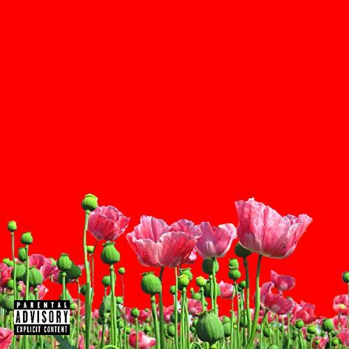 Opium (Prod. Pussy Pamper & GxldMane) [Explicit]