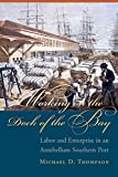 Working on the Dock of the Bay: Labor and Enterprise in an Antebellum Southern Port (The Carolina Lowcountry and the Atlantic World) (English Edition)