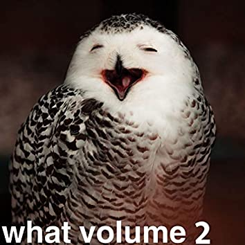 what volume 2