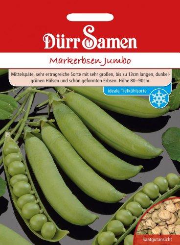 Dürr Samen 0204 Markerbse Jumbo (Markerbsensamen)