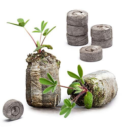 Danolt 36 Pezzi dischetti di Torba per germinazione - Il Terreno compresso Si espande con Acqua per piantare Erbe, Fiori e Verdure, Facile da trapiantare.