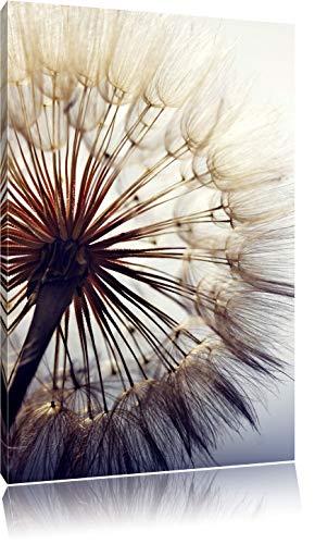 Schöne Pusteblume, Format: 80x60 auf Leinwand, XXL riesige Bilder fertig gerahmt mit Keilrahmen, Kunstdruck auf Wandbild mit Rahmen, günstiger als Gemälde oder Ölbild, kein Poster oder Plakat