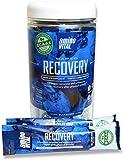 Amino VITAL Rapid Recovery – Fermented Vegan BCAAs Amino Acid Powder + Complex Carbohydrates | Single Serve BCAA, Glutamine & Arginine | 3 Canister Bundle