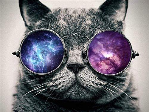 DIY Ölgemälde Kit Malen nach Zahlen Kit für Kinder und Erwachsene - Kurzhaar Katze mit Sonnenbrille Tier-40x50cm mit Rahmen