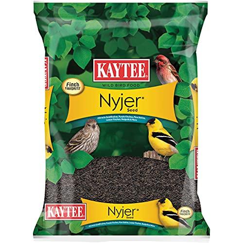Best nyjer seed bird feeders