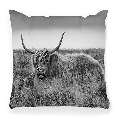 LXJ-CQ Funda de Almohada de Tiro 18x18 Shaggy Highland Ganado Dartmoor Vaca...