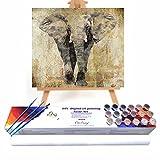 Qegyxk Elefante Animal Pintar por Numeros Adultos Niños DIY Pintura por Números con Pinceles y Pinturas 50x50cm Sin Marco