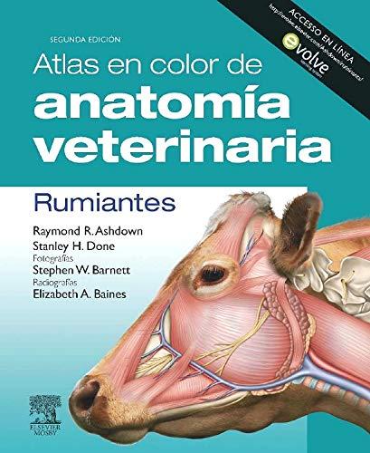 Atlas en color de anatomía veterinaria. Rumiantes + Evolve (Spanish Edition)