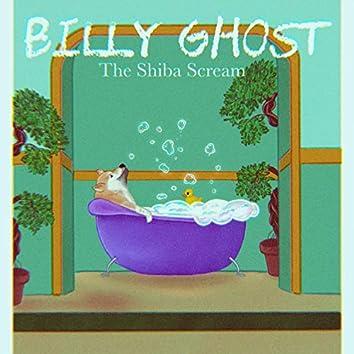The Shiba Scream