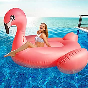 Best inflatable flamingo pool float Reviews