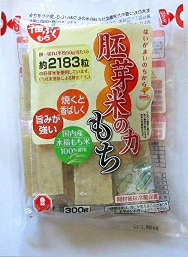 マルシン食品 胚芽米の力もち300g