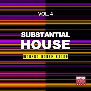 Substantial House, Vol. 4 (Modern House Guide)