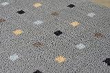 Mat-Master Mikrofaser-Fußmatte 40x70cm / Flauschige Türmatte mit Funktions-Microfaser für starken Nässe- und Schmutzfang/waschbar & rutschfest (grau - Punkte) - 5