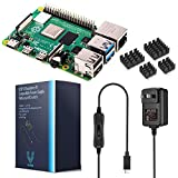 Raspberry Pi 4 Model B (8GB) with Vilros Pi 4 Compatible Power Supply and Set of Heatsinks