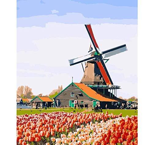 nobrand Ölgemälde Geschenk Für Erwachsene Kinder Tulip Manor DIY Vorgedruckt Leinwand 40X50Cm