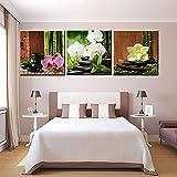 BIGSHOPART 3 Piezas sobre orquídeas Flores Paisaje Pared Arte imágenes Lienzo impresión Pintura al óleo estética decoración del hogar Cartel Dormitorio Obra de Arte / 40x40cmx3 sin Marco