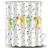 Whim-Wham Duschvorhang mit bunten Vögeln & Papageien, Regenbogenfarben, Punkte, Tiermotiv, Gelb, Marineblau, Grün, modisches Badezimmer-Dekor, Vorhang-Set mit 12 Haken.