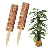 Vockvic Support Tuteurs pour Plantes Grimpantes, 2 Pièces Poteaux de Coco...
