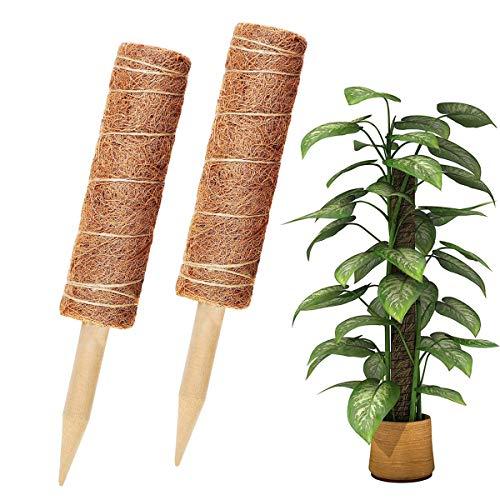 Vockvic Totem Stange, 2PCS Pflanzstab Kokos Natürlicher Kokosstab, Verlängerbar Coir Moss Stick Coir Moss Totem Pole für Pflanzenunterstützung Klettern Zimmerpflanzen Creepers