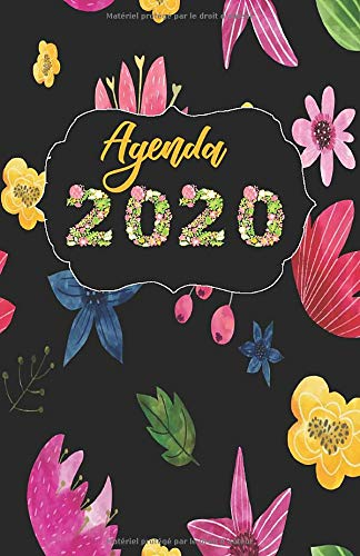 Agenda 2020: Agenda Annuelle et Semainier | Calendrier 2020 | Format A5 | Une Semaine Sur 2 Pages | Planificateur , Agenda Journalier. (French Edition) ~ TOP Books