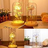 Jamicy simulación LED Rose lámpara cubierta de cristal decoración rosa boda decoración regalo cumpleaños (A)