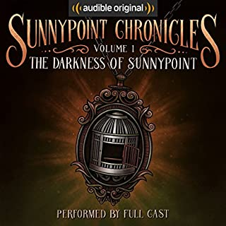 The Darkness of Sunnypoint cover art