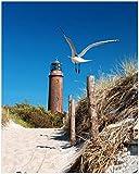 Wallario Poster - Möwe am Strand mit Leuchtturm in