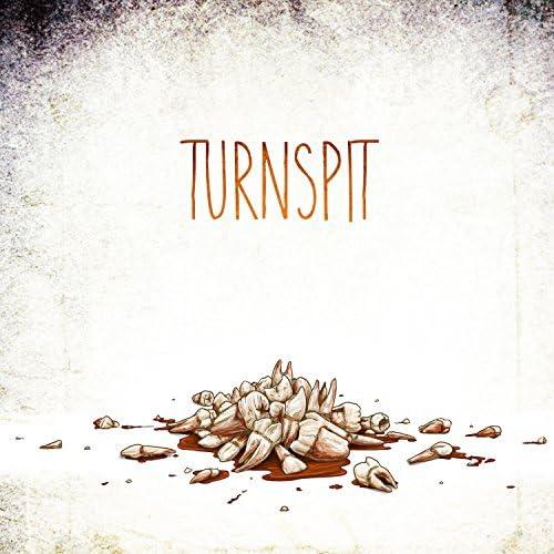 Turnspit