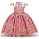 TTYAOVO Girls Lace Embroidered Backless Princess Birthday Party Dress Size (120) 4-5 Years Pink