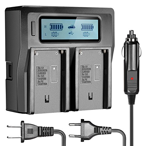Neewer Doppel-Ladegerät mit LCD-Display & 3 Plug (US-Stecker + EU-Stecker + Auto-Adapter) für Sony Camcorder Akkus