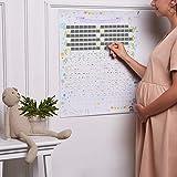 Calendario della gravidanza, ogni giorno una casella da grattare per scoprire informazioni, curiosità e consigli sui 9 mesi più emozionanti della tua vita