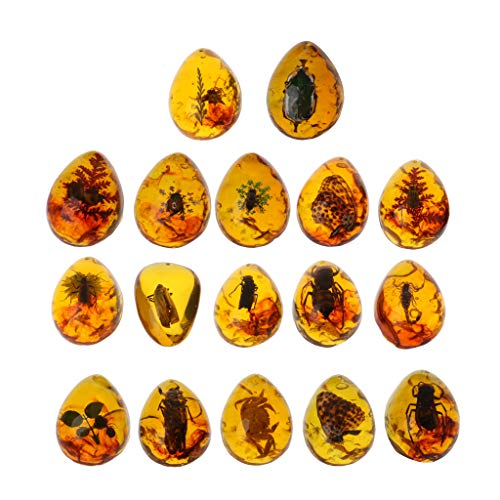 VIccoo Tiere Bernstein Schmetterling Insekten Stein Anhänger Halskette Edelstein für DIY Schmuck