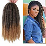 Marley Hair Ombre 4 Packs Afro Kinky Curly Crochet Hair 18 Inch Long Marley Twist Braiding Hair Kanekalon Synthetic Marley Braids Hair Extensions for Women(#T1B/27)