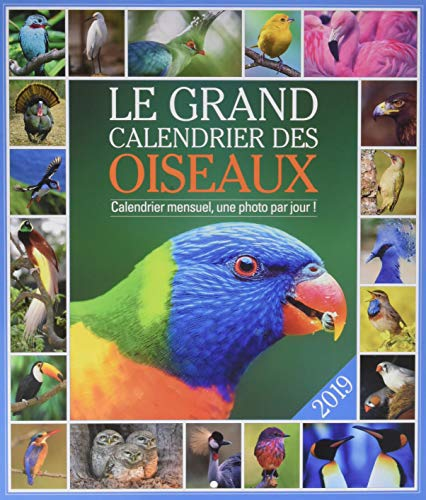 Le grand Calendrier des oiseaux 2019