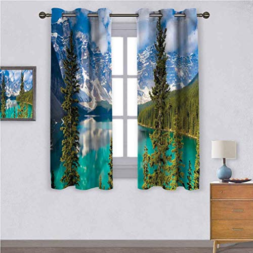 Drapes for Living Dining Room Landscape,Moraine Lake in Canada Curtain 42 x 63 Inch