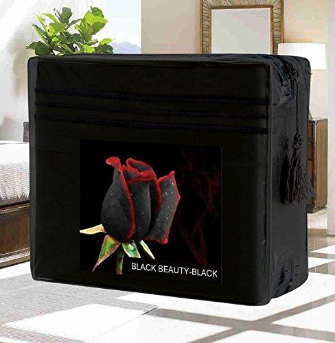Elegant Comfort Wrinkle-Free 1500 Thread Count Egyptian Quality Deep Pocket, 4-Piece Bed Sheet Set , Full, Black Beauty