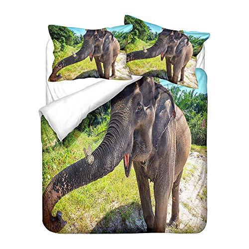 Juego de Cama, Funda de Edredón ( 200x200 cm ) y Funda de Almohada, Microfibra, Antialérgico, Fácil Cuidar, Suave y Suave - Mariposa Elefante