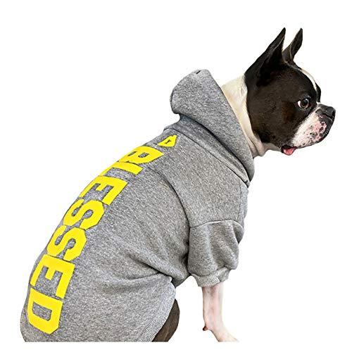 House Dogge Hoodie