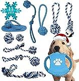 11 Stück Hundespielzeug Set,Robustes Welpenspielzeug blau Aus Reine Baumwolle,Hund Interaktives Spielzeug für kleine und mittelgroße Hunde,Robustes Zerrspielzeug Und Wurfspielzeug